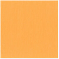 Bazzill Basics - 12 x 12 Cardstock - Canvas Texture - Apricot