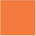 Bazzill Basics - 12 x 12 Cardstock - Smooth Texture - Orange Slice