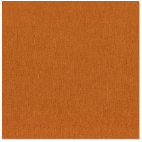 Bazzill Basics - 12 x 12 Cardstock - Canvas Texture - Yam