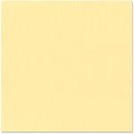 Bazzill Basics - 12 x 12 Cardstock - Canvas Texture - Chiffon