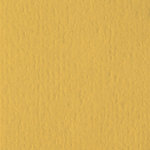 Bazzill Basics - 12 x 12 Cardstock - Orange Peel Texture - Honeycomb