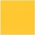 Bazzill - 12 x 12 Cardstock - Criss Cross Texture - Sunshine