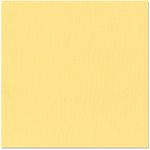 Bazzill Basics - 12 x 12 Cardstock - Orange Peel Texture - Daisy