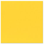 Bazzill Basics - 12 x 12 Cardstock - Canvas Texture - Yellow