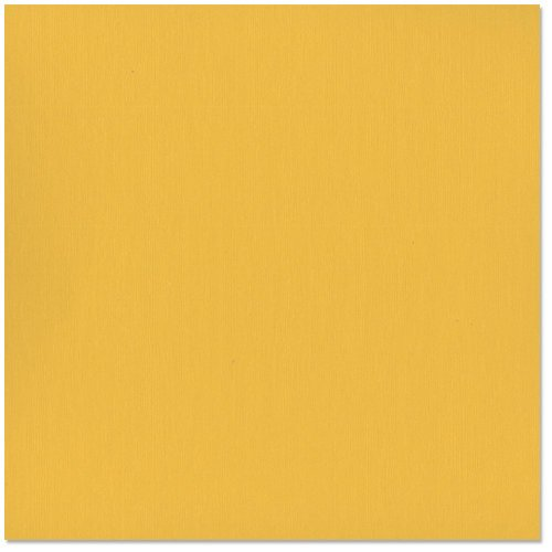 Bazzill - 12 x 12 Cardstock - Grasscloth Texture - Yukon Gold