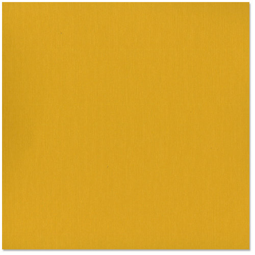 Bazzill - 12 x 12 Cardstock - Grasscloth Texture - Curry Spice