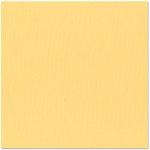Bazzill - 12 x 12 Cardstock - Canvas Texture - Glow
