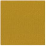 Bazzill Basics - 12 x 12 Cardstock - Canvas Texture - Mexico City, CLEARANCE