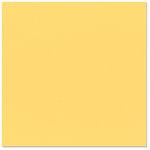 Bazzill Basics - 12 x 12 Cardstock - Classic Texture - Sunflower