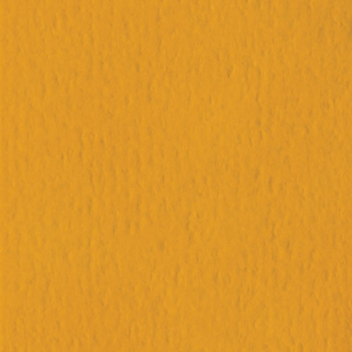 Bazzill Basics - 12 x 12 Cardstock - Orange Peel Texture - Butterscotch