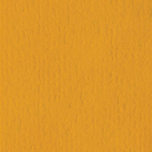 Bazzill Basics - 12 x 12 Cardstock - Orange Peel Texture - Butterscotch