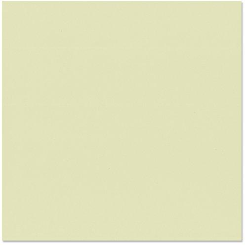 Bazzill Card - Aloe Vera