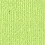 Bazzill Basics - Bulk Cardstock Pack - 25 Sheets - 12x12 - Limeade, CLEARANCE