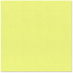 Bazzill Basics - 12 x 12 Cardstock - Canvas Texture - Limeade