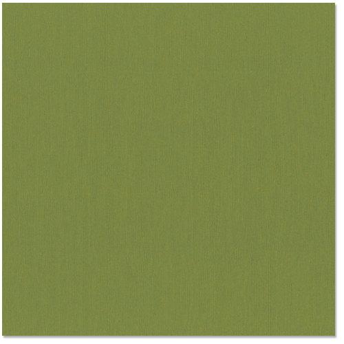 Bazzill - 12 x 12 Cardstock - Grasscloth Texture - Guacamole