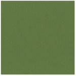 Bazzill Basics - 12 x 12 Cardstock - Grasscloth Texture - Rain Forest