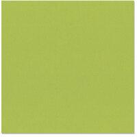 Bazzill Basics - 12 x 12 Cardstock - Canvas Texture - Parakeet