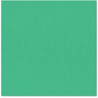Bazzill Basics - 12 x 12 Cardstock - Grasscloth Texture - Fiji