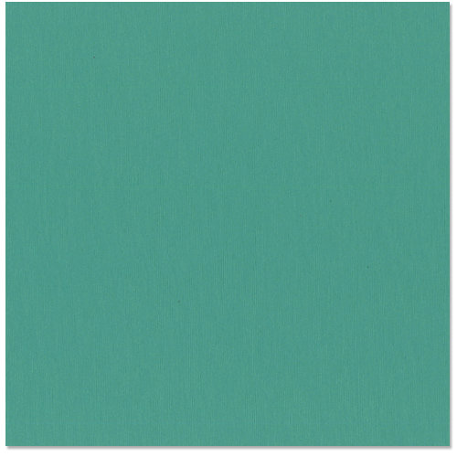 Bazzill Basics - 12 x 12 Cardstock - Grasscloth Texture - Kachina