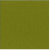 Bazzill Basics - 12 x 12 Cardstock - Canvas Texture - Hillary