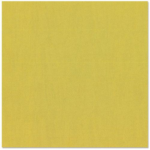 Bazzill - 12 x 12 Cardstock - Canvas Texture - Lizard