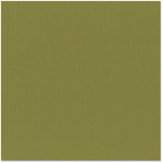 Bazzill - 12 x 12 Cardstock - Canvas Texture - Saguaro