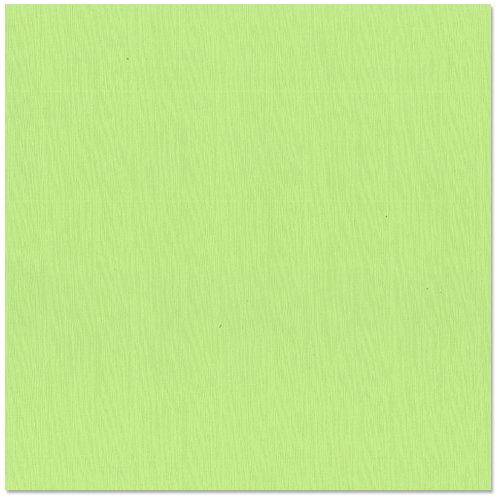 Bazzill Basics - 12 x 12 Cardstock - Burlap Texture - Lime Sherbet