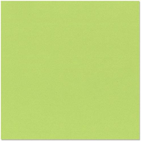 Bazzill Basics - 12 x 12 Cardstock - Smooth Texture - Apple Crush