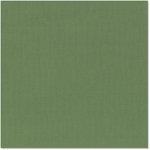 Bazzill Basics - 12 x 12 Cardstock - Canvas Texture - Vancouver