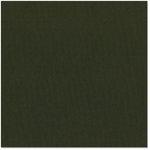 Bazzill Basics - 12 x 12 Cardstock - Canvas Texture - Berlin