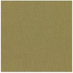 Bazzill Basics - 12 x 12 Cardstock - Canvas Texture - Auckland, CLEARANCE