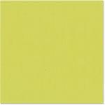 Bazzill - 12 x 12 Cardstock - Burlap Texture - Granny Smith