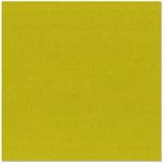 Bazzill Basics - 12 x 12 Cardstock - Burlap Texture - Sour Apple