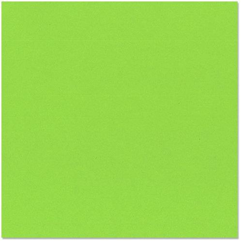 Bazzill - 12 x 12 Cardstock - Classic Texture - Kiwi