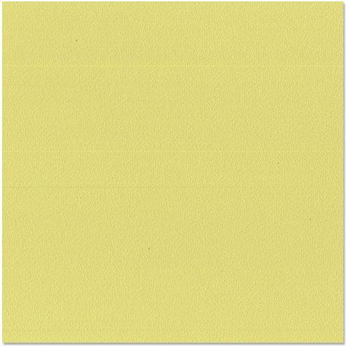 Bazzill Basics - 12 x 12 Cardstock - Orange Peel Texture - Green Tea