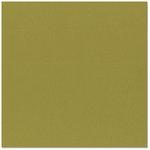 Bazzill Basics - 12 x 12 Cardstock - Orange Peel Texture - Olive