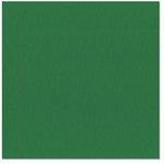 Bazzill Basics - 12 x 12 Cardstock - Canvas Texture - Green