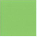 Bazzill - 12 x 12 Cardstock - Criss Cross Texture - Grasshopper