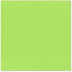 Bazzill - 12 x 12 Cardstock - Criss Cross Texture - Limeade