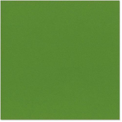 Bazzill Basics - 12 x 12 Cardstock - Orange Peel Texture - Patch