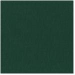 Bazzill Basics - 12 x 12 Cardstock - Canvas Texture - Jade