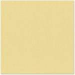 Bazzill Basics - 12 x 12 Cardstock - Canvas Texture - Bamboo