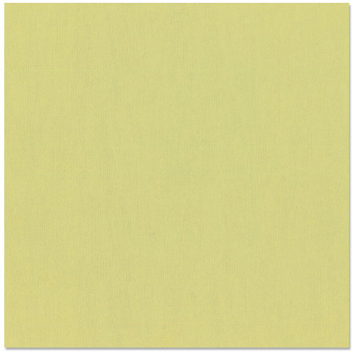 Bazzill Basics - 12 x 12 Cardstock - Canvas Texture - Pear
