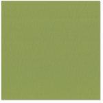 Bazzill - 12 x 12 Cardstock - Canvas Texture - Leapfrog