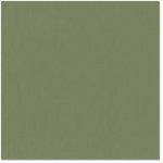 Bazzill - 12 x 12 Cardstock - Canvas Texture - Fern