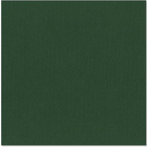 Bazzill Basics - 12 x 12 Cardstock - Canvas Texture - Aspen
