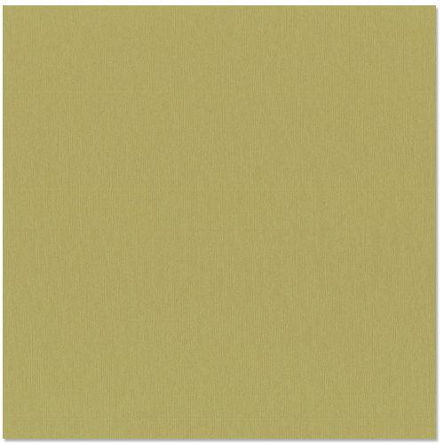 Bazzill - 12 x 12 Cardstock - Grasscloth Texture - Witch Hazel