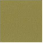 Bazzill Basics - 12 x 12 Cardstock - Grasscloth Texture - Safari
