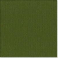 Bazzill Basics - 12 x 12 Cardstock - Canvas Texture - Ivy