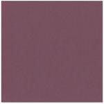 Bazzill Basics - 12 x 12 Cardstock - Canvas Texture - Jubilee